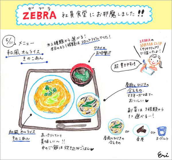 zebura_03.jpg