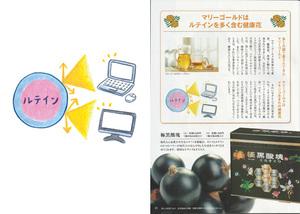 koyo_03.jpg